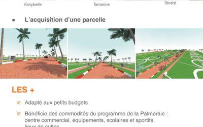 NEWSLETTER – Résidence La Palmeraie –  Newsletter décembre 2017